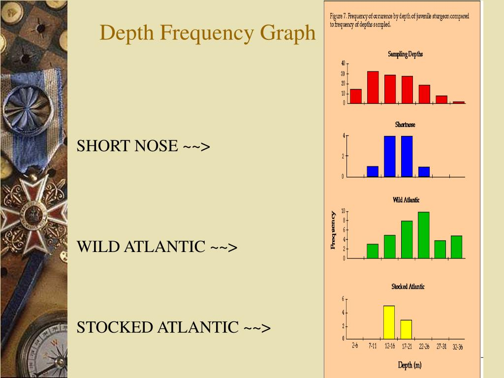 Depth Frequency Graph
