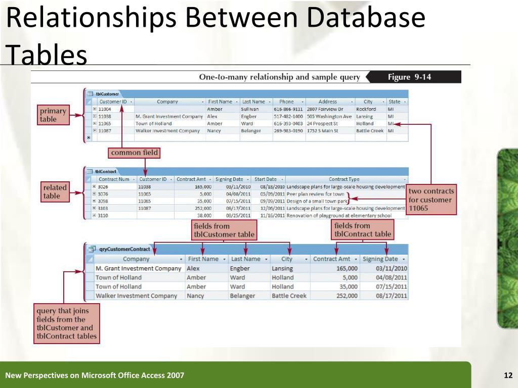 Relationships Between Database Tables