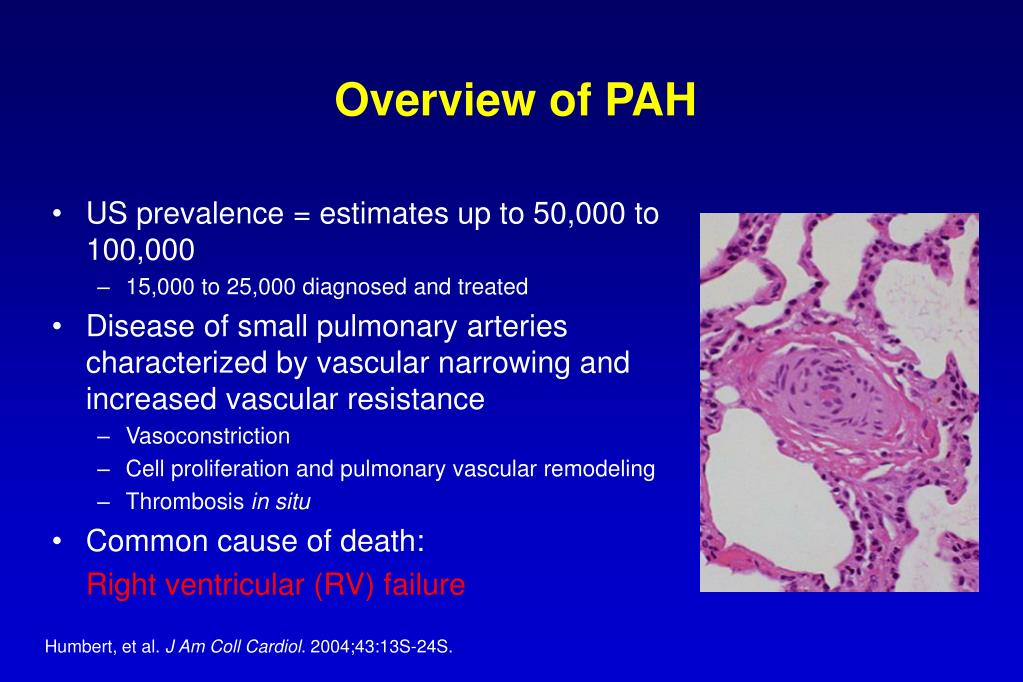 Overview of PAH