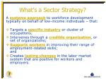 what s a sector strategy