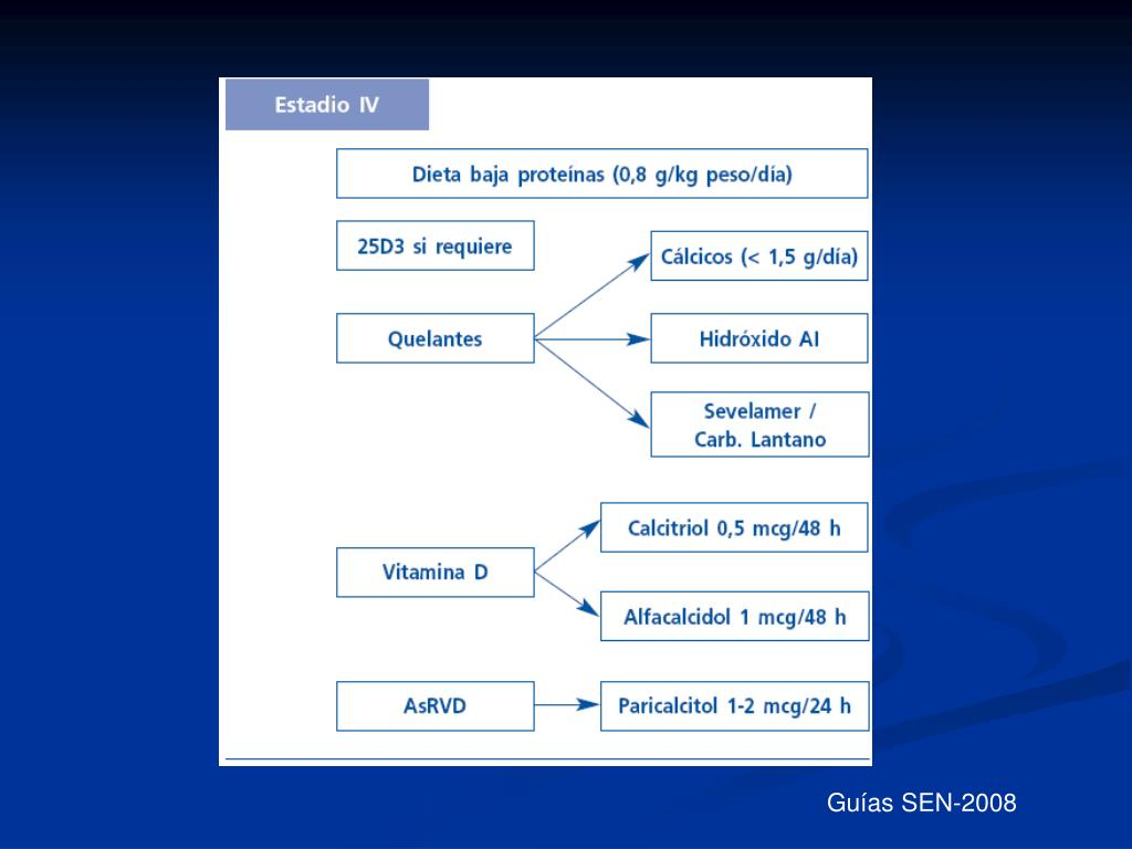 Guías SEN-2008
