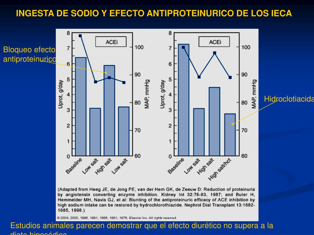 INGESTA DE SODIO Y EFECTO ANTIPROTEINURICO DE LOS IECA