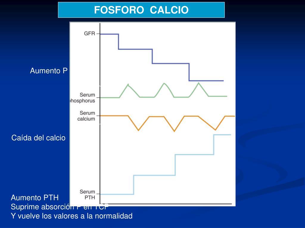 FOSFORO  CALCIO