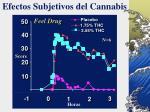 efectos subjetivos del cannabis