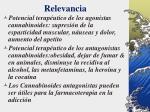 relevancia4