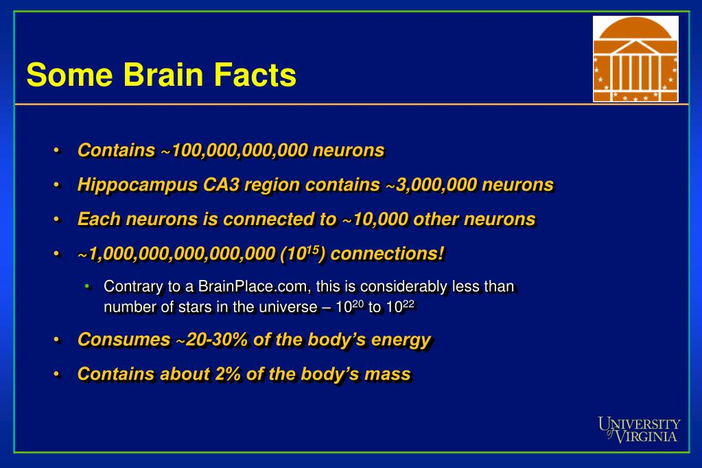 Some Brain Facts
