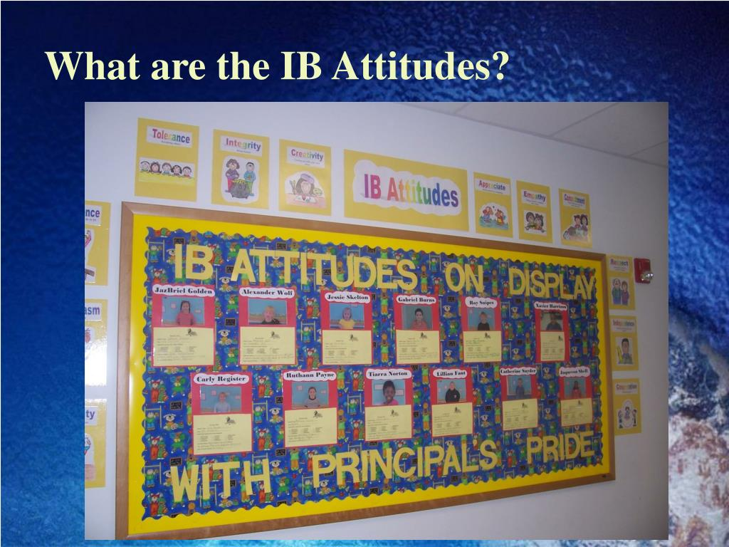 What are the IB Attitudes?