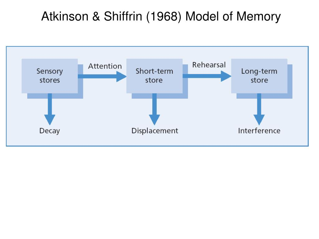 theories and stages of memory Theories of personal identity  chain of person-stages connected by episodic memory psychological continuity person-stages: abc 1988 1996 2006 experience x memory of x.