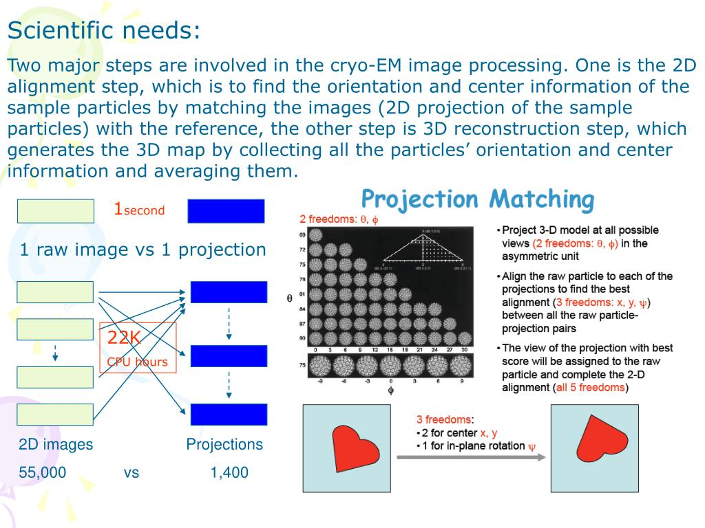 2D images                     Projections