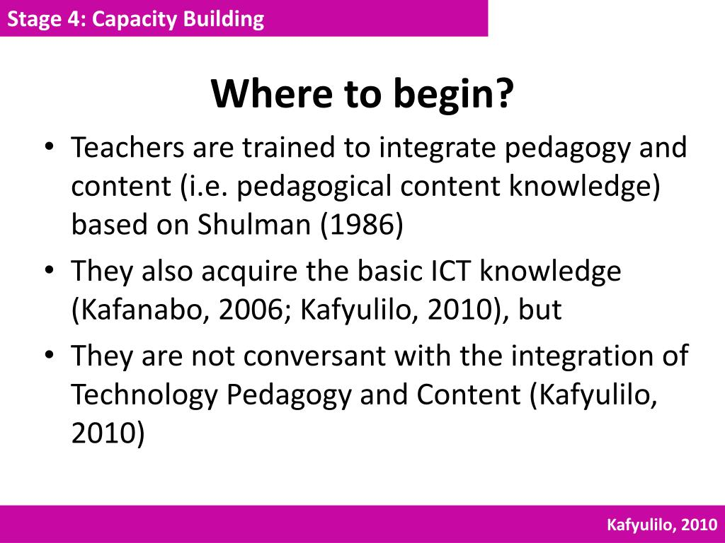 Stage 4: Capacity Building