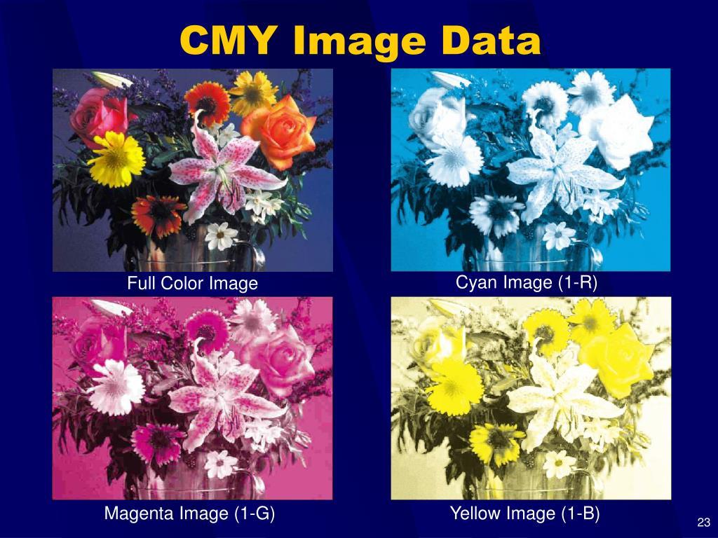 Cyan Image (1-R)