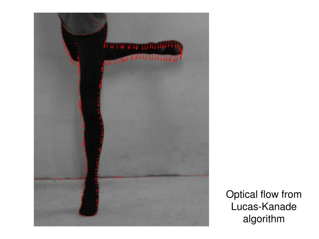 Optical flow from Lucas-Kanade algorithm