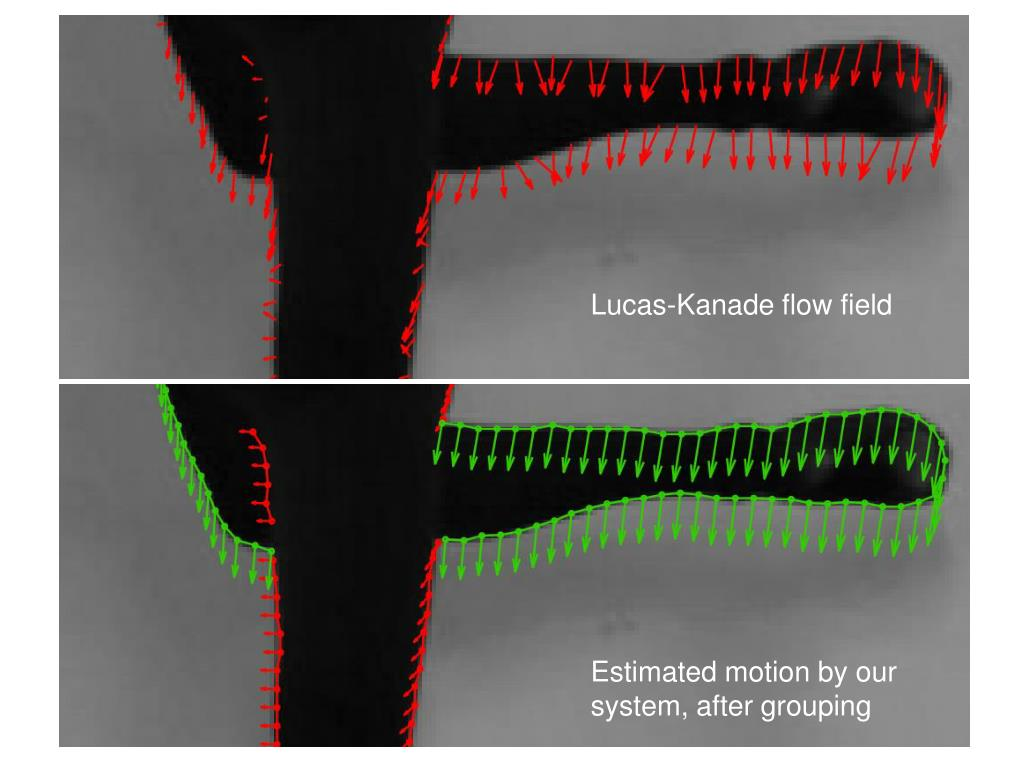 Lucas-Kanade flow field