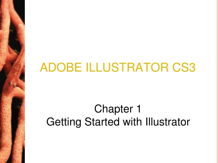 Adobe illustrator cs3 l.jpg