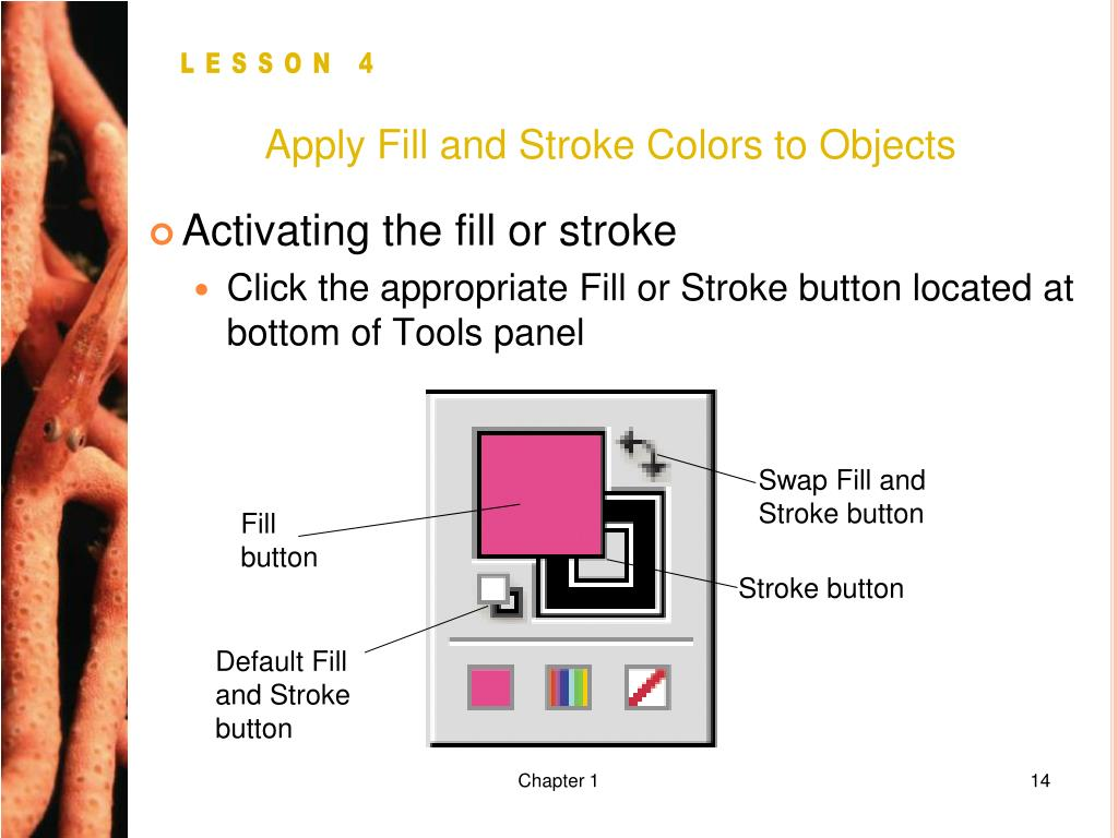Apply Fill and Stroke Colors to Objects