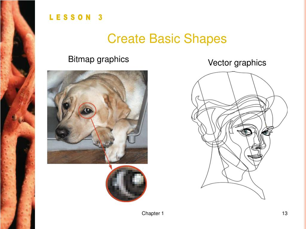 Create Basic Shapes