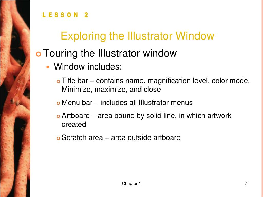 Exploring the Illustrator Window