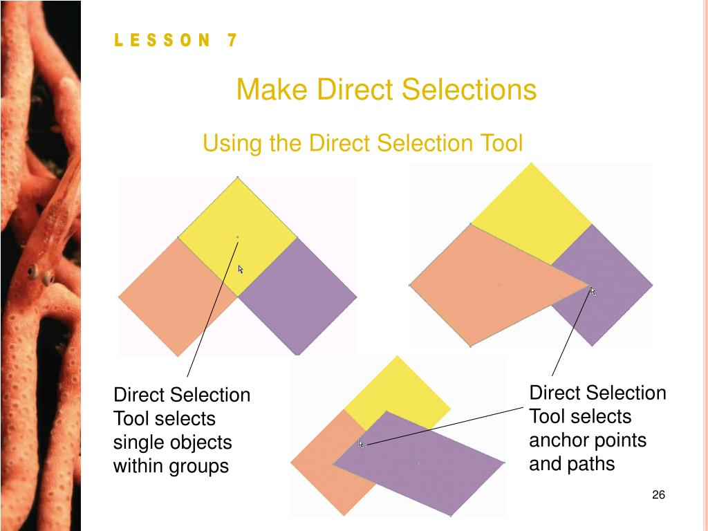 Make Direct Selections