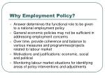 why employment policy