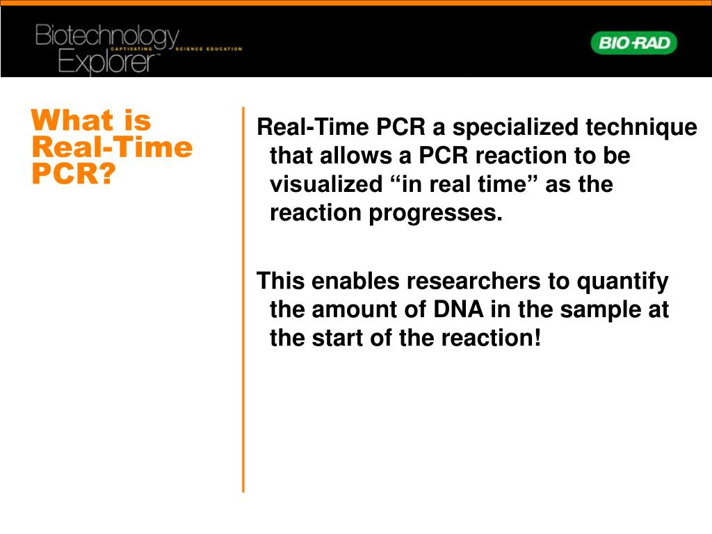 What is Real-Time PCR?