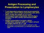antigen processing and presentation to lymphocytes