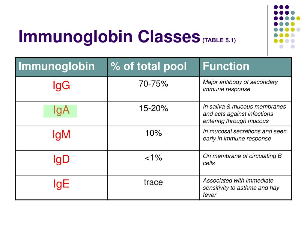 Immunoglobin Classes