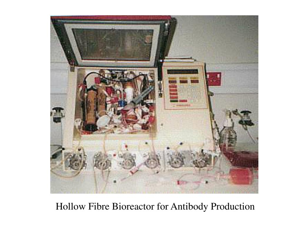 Hollow Fibre Bioreactor for Antibody Production