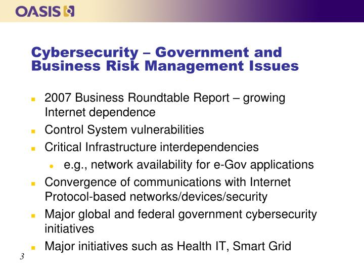 Cybersecurity government and business risk management issues