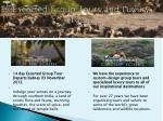 escorted group tours and luxury tours9