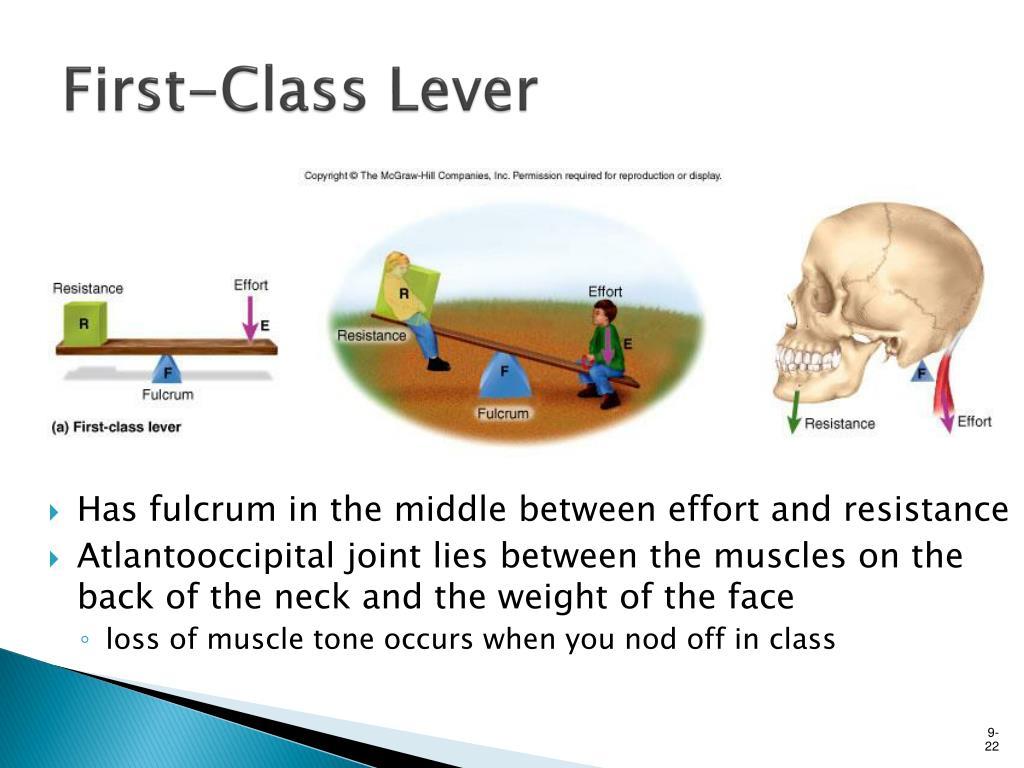 First-Class Lever
