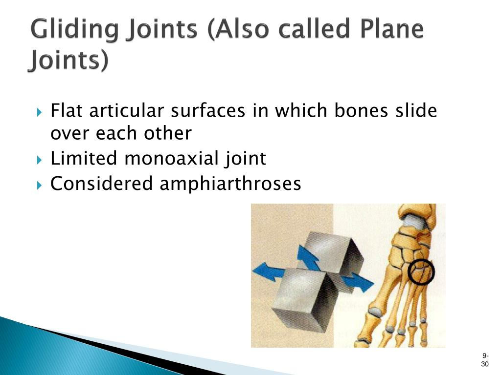 Gliding Joints (Also called Plane Joints)