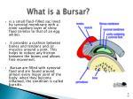 what is a bursar