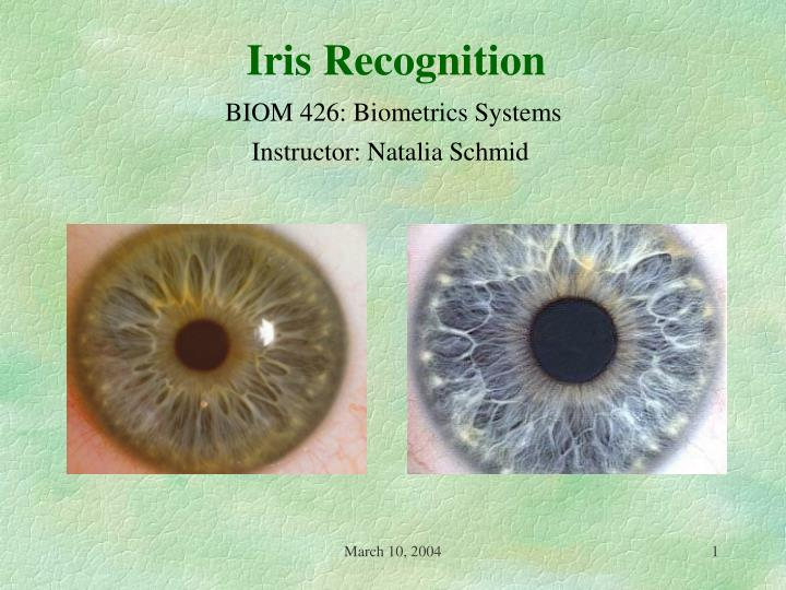 essays iris online Iris scanning essays: over 180,000 iris scanning essays, iris scanning term papers, iris scanning research paper, book reports 184 990 essays, term and research.