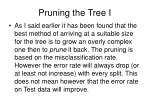 pruning the tree i