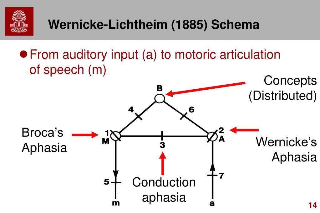 Wernicke-Lichtheim (1885) Schema