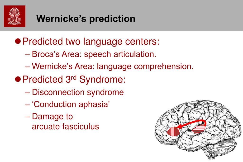 Wernicke's prediction