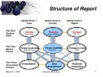 structure of report