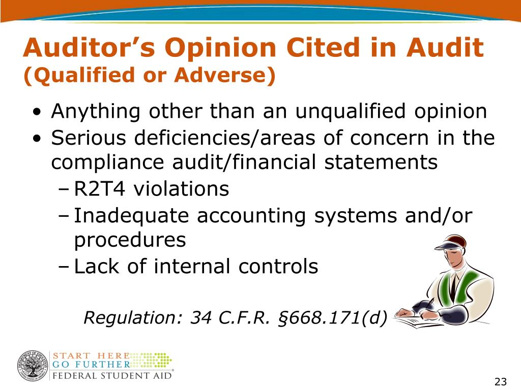 Auditor's Opinion Cited in Audit