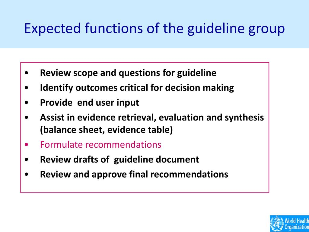 Expected functions of the guideline group