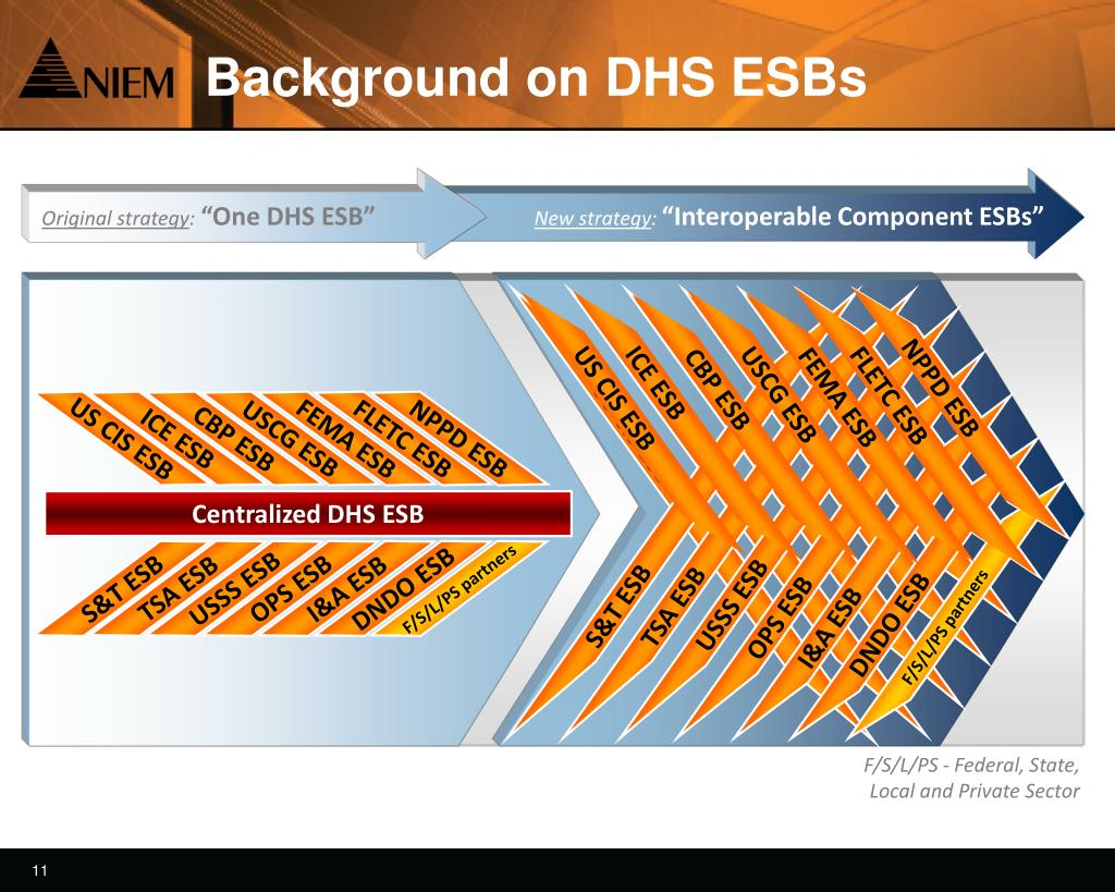 Background on DHS ESBs