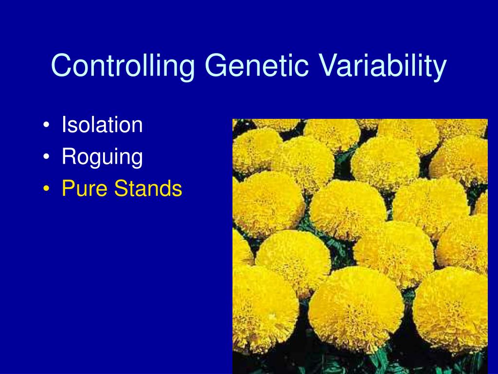 Controlling Genetic Variability