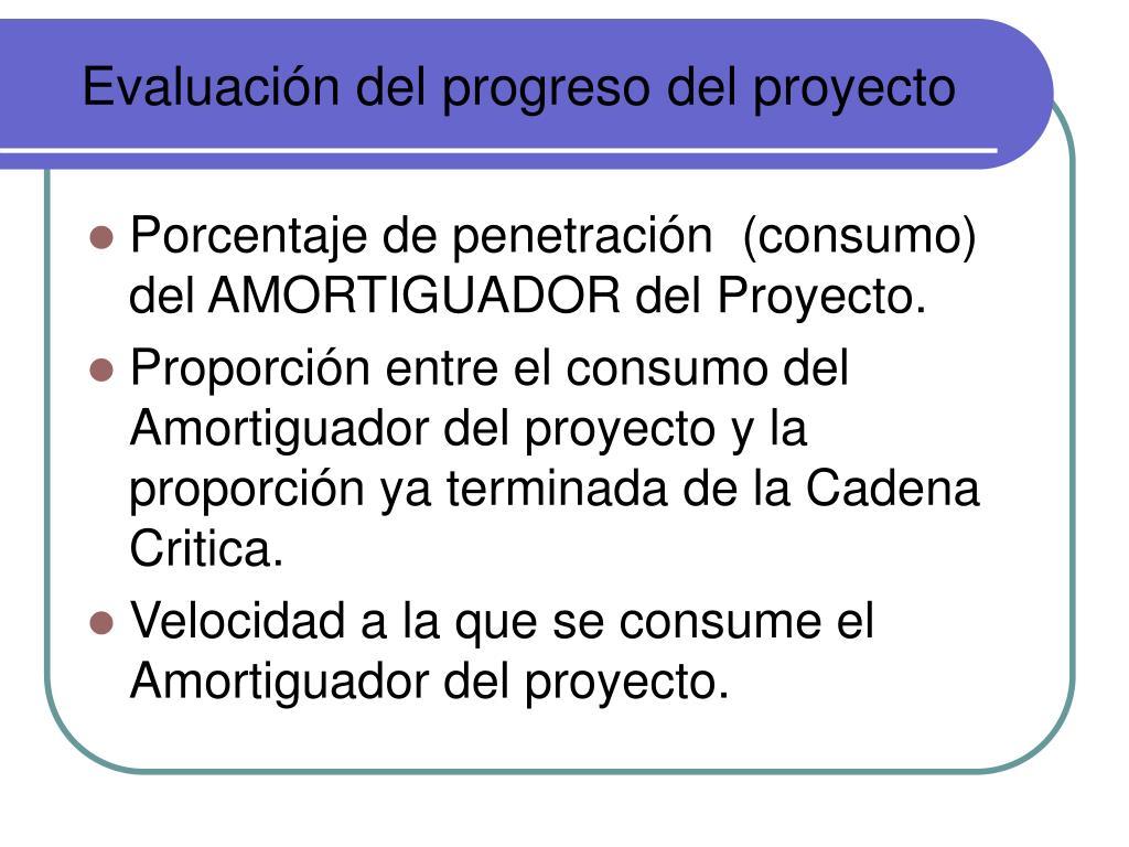 Evaluación del progreso del proyecto
