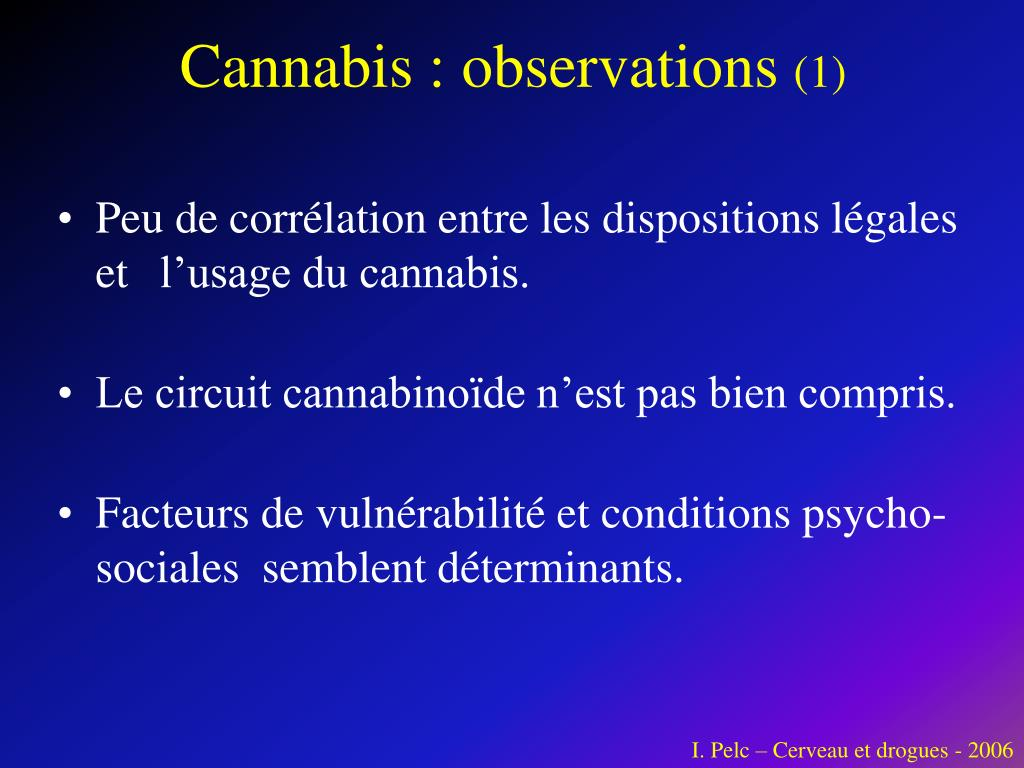 Cannabis : observations
