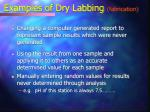examples of dry labbing fabrication