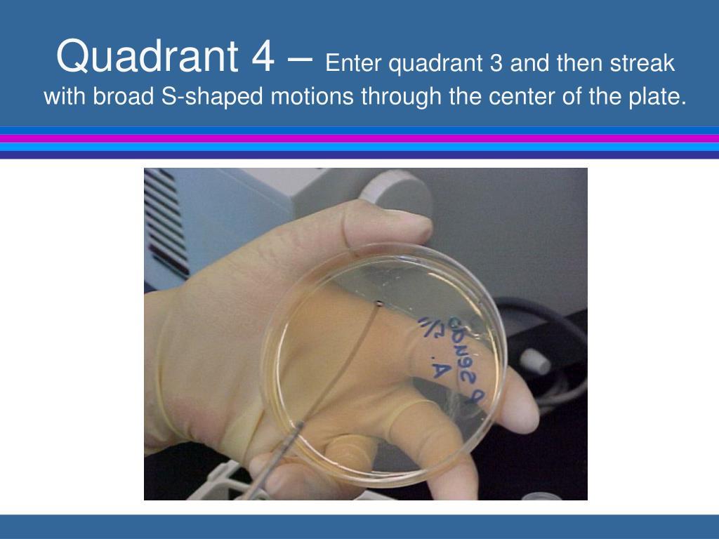Quadrant 4 –