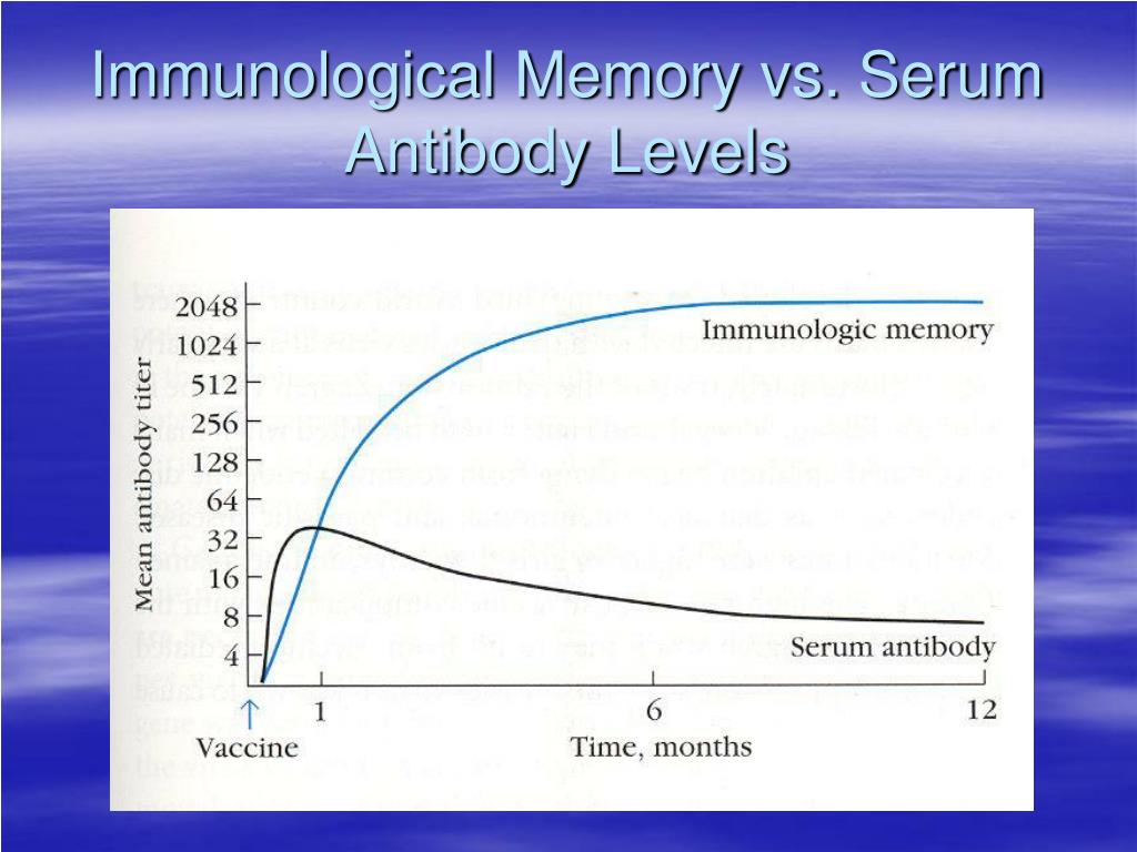 Immunological Memory vs. Serum Antibody Levels