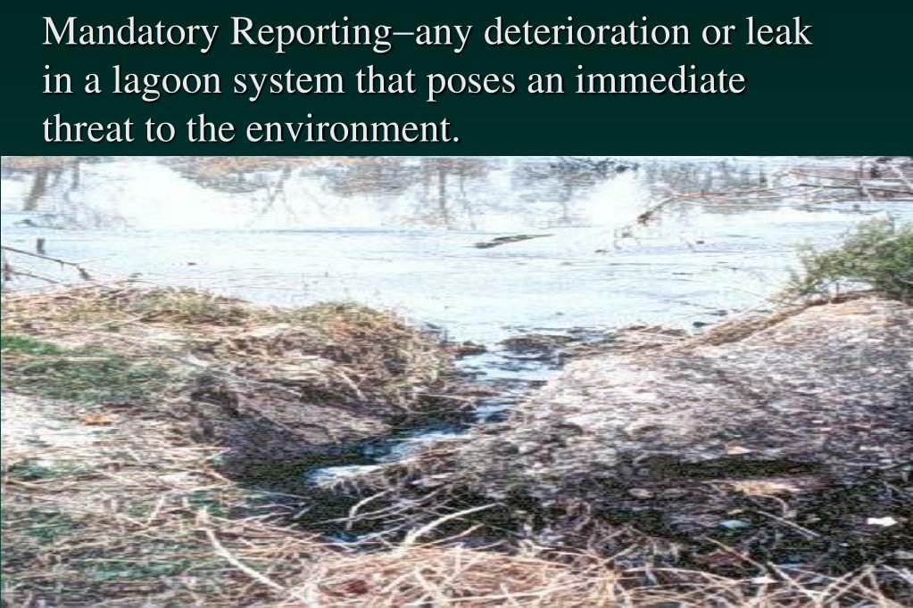 Mandatory Reporting