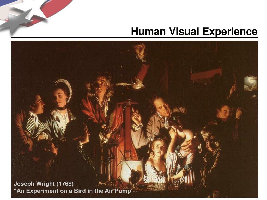 Human Visual Experience