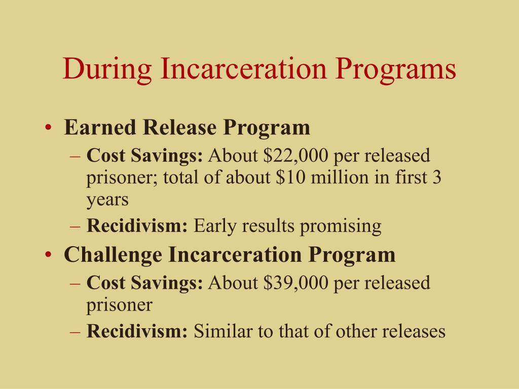 During Incarceration Programs