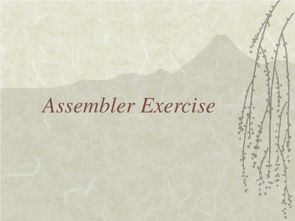 Assembler Exercise